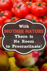 With Mother Nature There Is No Room to Procrastinate | Backdoor Survival
