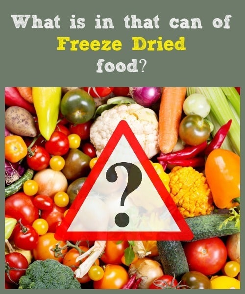 What is in that can of freeze dried food? | Backdoor Survival