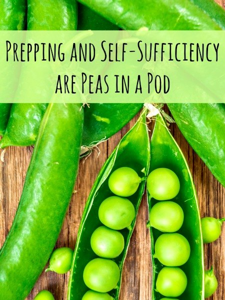 Prepping and Self-Sufficiency are Peas in a Pod | Backdoor Survival