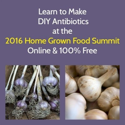 DIY Antibiotics 2016 HGFS | Backdoor Survival