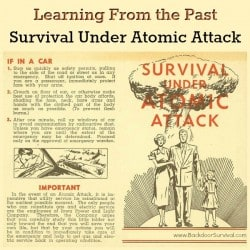 Learning From the Past Survival Under Atomic Attack | Backdoor Survival