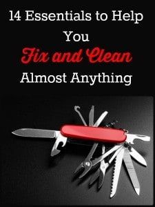 14 Essentials to Help You Fix and Clean Almost Anything   Backdoor Survival