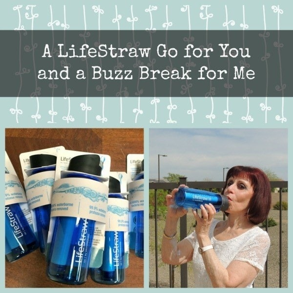 A LifeStraw Go for You and a Buzz Break for Me | Backdoor Survival