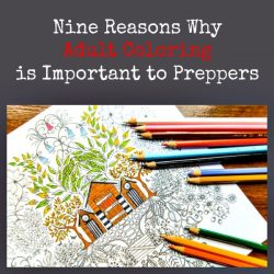 Nine Reasons Why Adult Coloring is Important to Preppers | Backdoor Survival