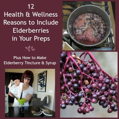 12 Wellness Reasons to Include Elderberries in Your Preps