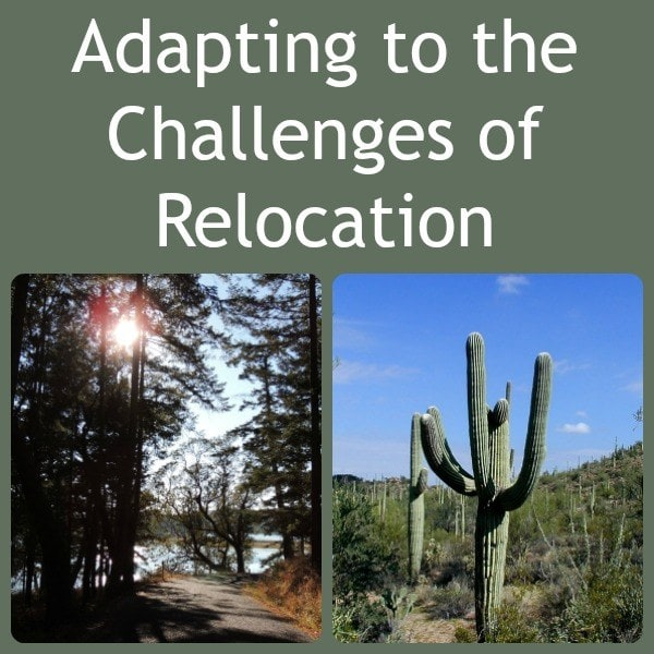 Adapting to the Challenges of Relocation | Backdoor Survival