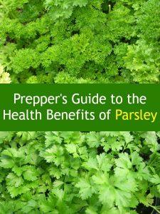 Health Benefits of Parsley | Backdoor Survival