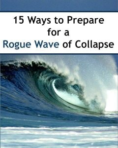15 Ways To Prepare for a Rogue Wave of Collapse | Backdoor Survival