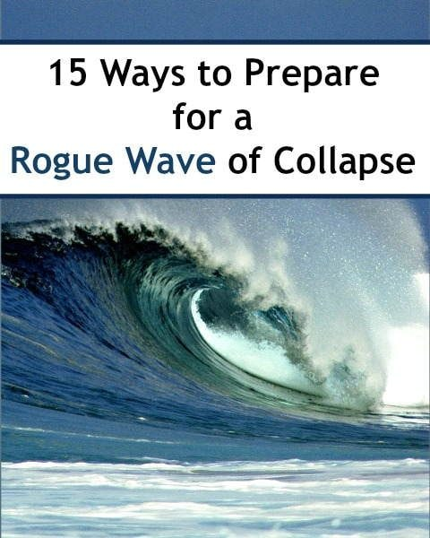 15 Ways To Prepare for a Rogue Wave of Collapse   Backdoor Survival
