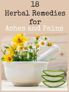 18 herbal remedies for aches and pains   Backdoor Survival