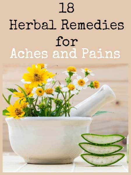 18 herbal remedies for aches and pains | Backdoor Survival