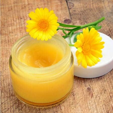 Miracle Healing Salve | Backdoor Survival