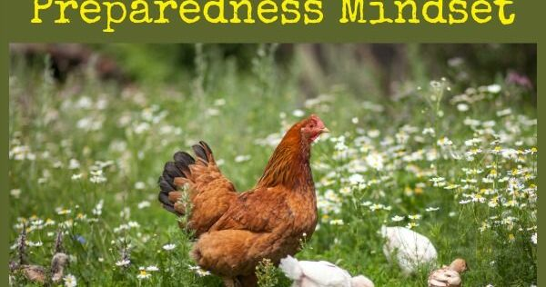 Teaching Kids to Have a Preparedness Mindset