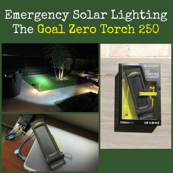 Goal Zero Torch 250 | Backdoor Survival