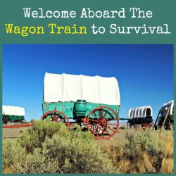 Welcome Aboard The Wagon Train to Survival | Backdoor Survival