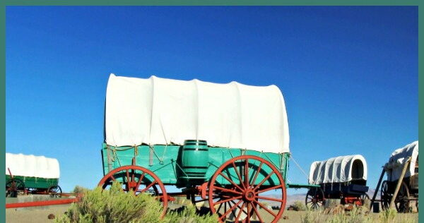 Welcome Aboard The Wagon Train to Survival