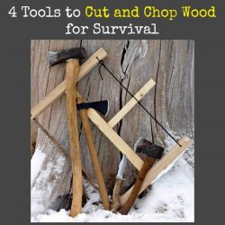 4 Tools to Cut and Chop Wood for Survival