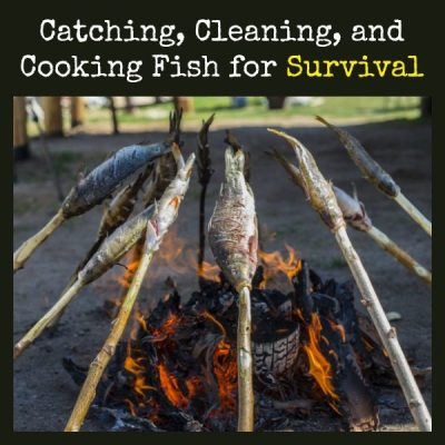 Catching, Cleaning, and Cooking Fish for Survival