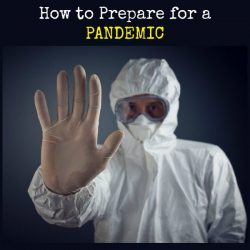 How to Prepare for a Pandemmic | Backdoor Survival