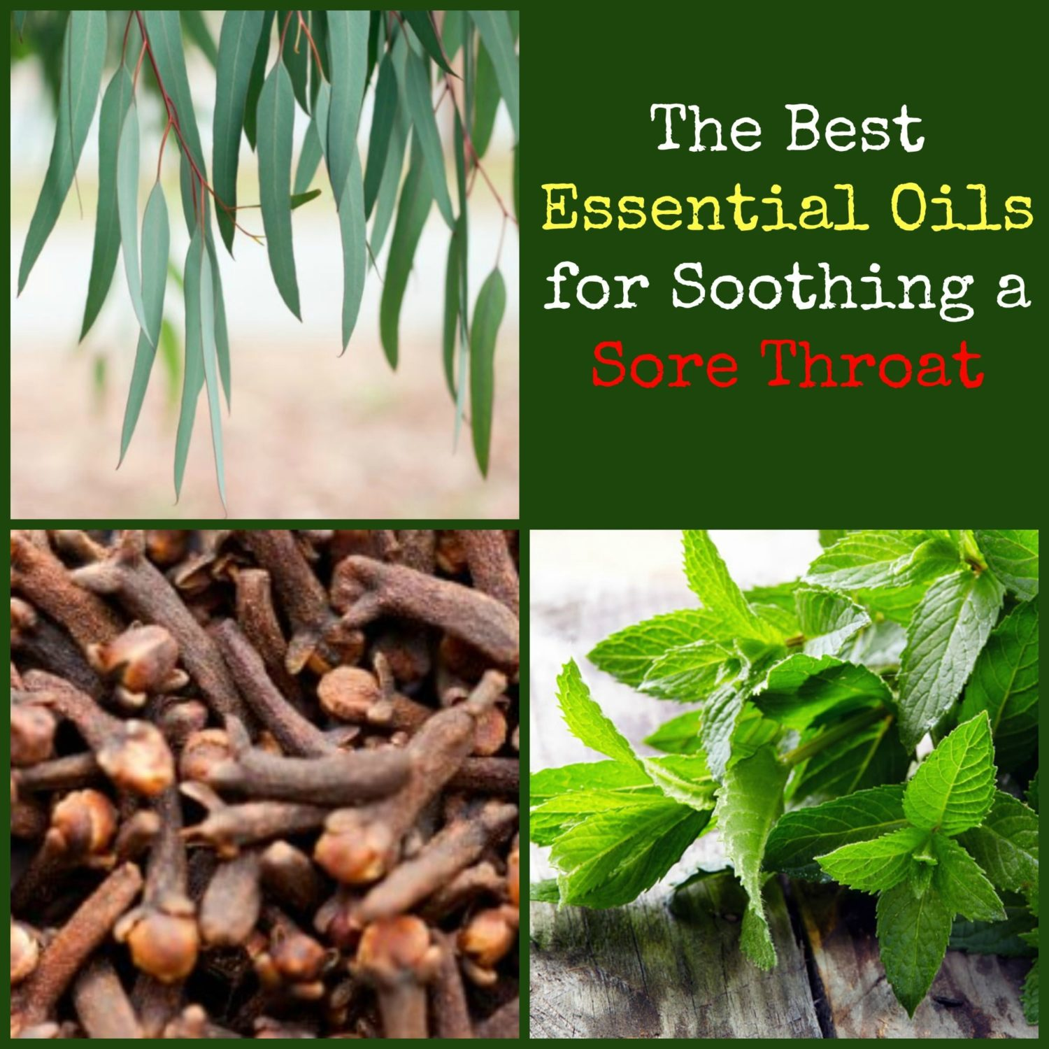 Best Essential Oils For Sore Throat Soothe Your Throat With Essential Oils Backdoor Survival