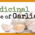 Health Benefits of Garlic: The Medicinal Use of Garlic