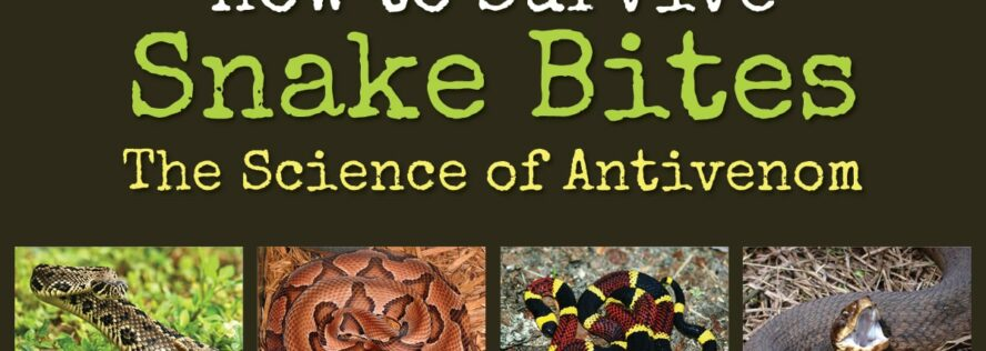 How to Survive Snake Bites –The Science of Antivenom