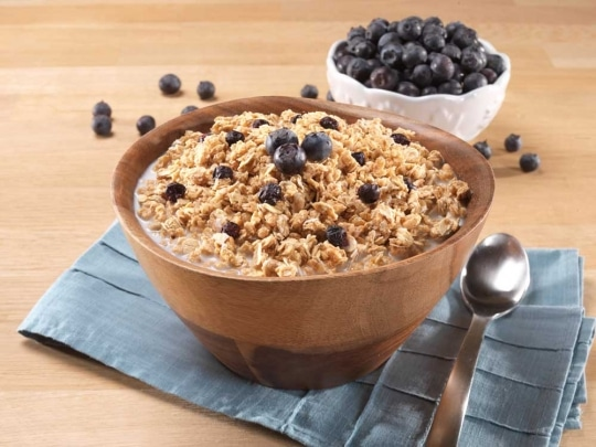 best mountain house meals granola