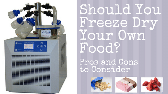 Should You Freeze Dry Your Own Food? Pros and Cons to Consider
