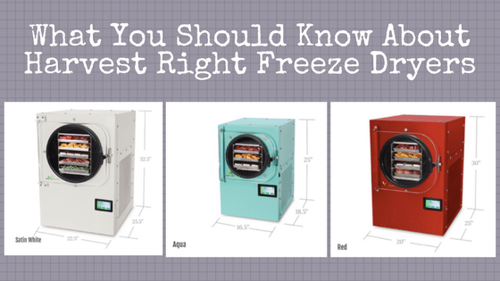Best Freeze Dryers for Drying Food at Home
