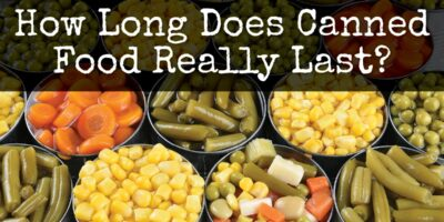 How Long Does Canned Food Really Last?