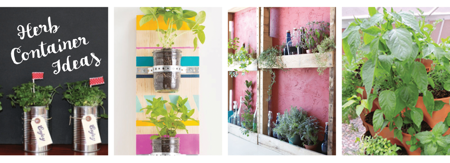 Herb Container Ideas