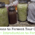13 Reasons to Ferment Your Own Food: Introduction to Fermenting