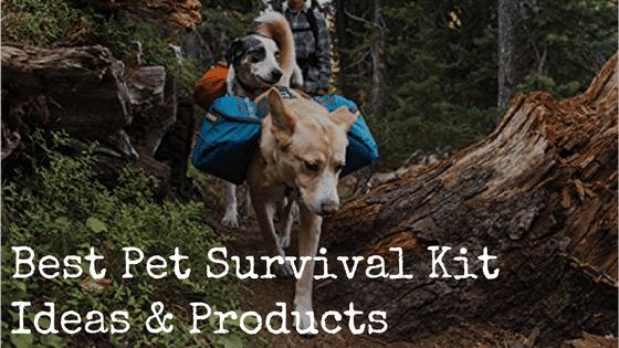 Best Pet Survival Kit Ideas & Products