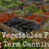 Best Vegetables For Long Term Canning