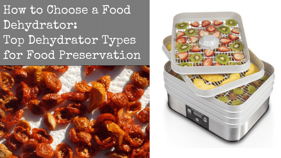 How to Choose a Food Dehydrator: Top Dehydrator Types for Food Preservation