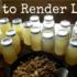 How to Render Lard