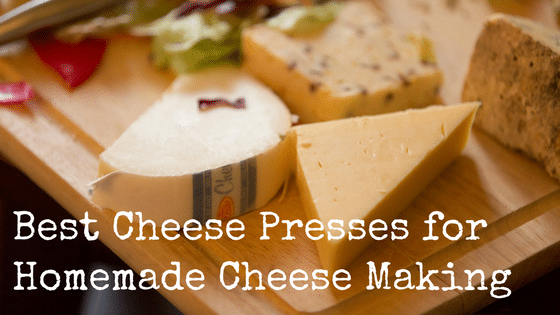 Best Cheese Presses for Homemade Cheese Making