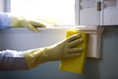 cleaning gloves sponge