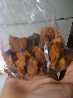 Chaga Mushroom in bag