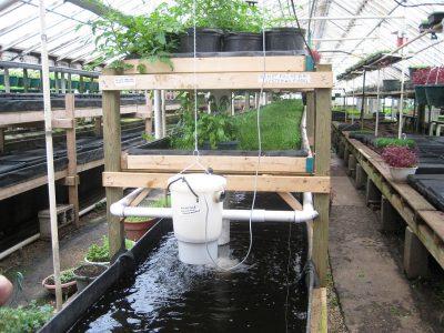 aquaponic growing power milwaukee