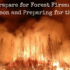 How to Prepare for Forest Fires: Fire Season and Preparing for the Worst