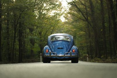 blue car in forest nature