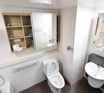 toilet-bathroom