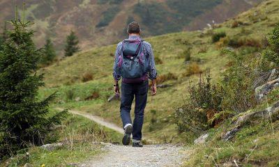 wanderer-backpack-hike-away