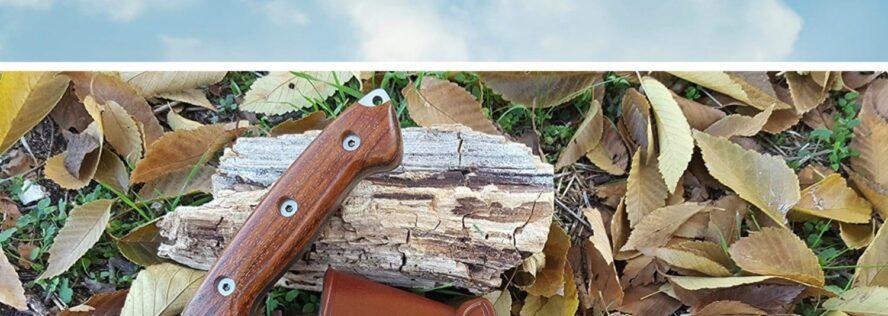 Top 10 Bushcraft Knives For The Practical Prepper