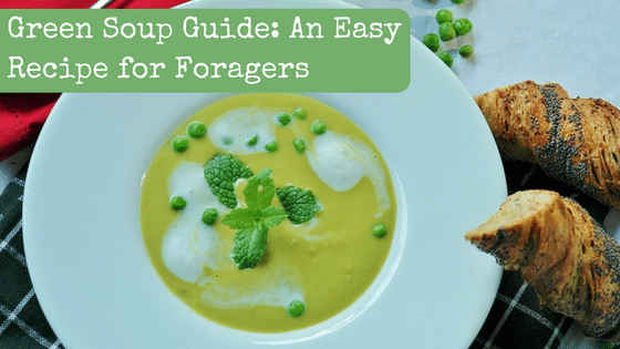 Green Soup Guide: An Easy Recipe for Foragers