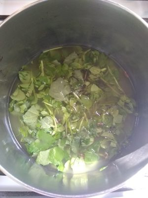 chunky green soup