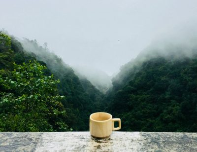 coffee cup nature