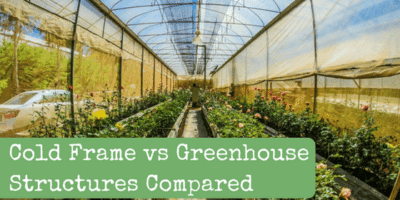 Cold Frame vs Greenhouse Structures Compared