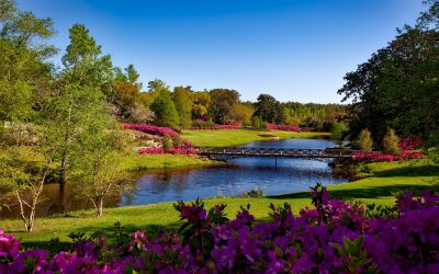 bellingrath-gardens-alabama-landscape-scenic